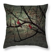 Visitors  Throw Pillow by Kim Loftis