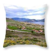 Vista 10 Throw Pillow