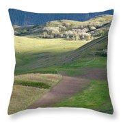 Vista 5 Throw Pillow