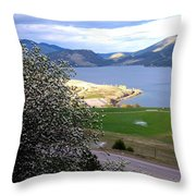 Vista 6 Throw Pillow