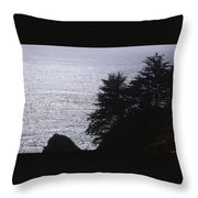 Vista - Julia Pfeiffer Burns State Park Throw Pillow