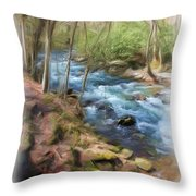 Vista Series 1244 Throw Pillow