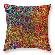Visual Series-d10 Throw Pillow