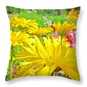 Vivid Colorful Yellow Daisy Flowers Daisies Baslee Troutman Throw Pillow