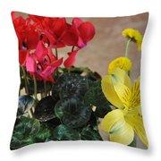 Vivid Colors Throw Pillow