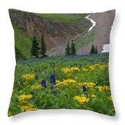 Vivid Colors Of The Colorado Alpine Throw Pillow
