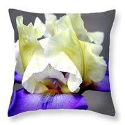 Vivid Iris 6622 H_3 Throw Pillow