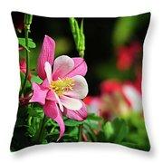 Vivid Pink Columbine Throw Pillow