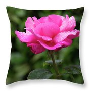 Vivid Pink Rose  Throw Pillow