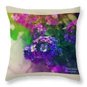 Vivid Purple Throw Pillow