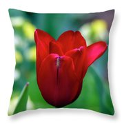 Vivid Red Tulip Throw Pillow