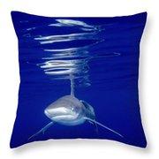 Vivid Shark Reflections Throw Pillow