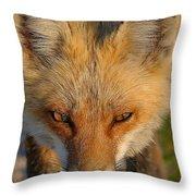 Vixen Throw Pillow by William Jobes