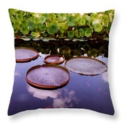 Voices In The Sky Throw Pillow