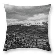 Volcan De Agua - Ciudad Vieja I Throw Pillow