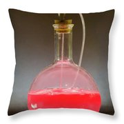 Volumetric Flask With Pink Liquid Chemical Experiment Throw Pillow