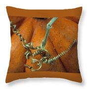 Voluptuous Autumn Throw Pillow