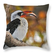 Von Der Decken Hornbill Throw Pillow