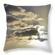 Vuelo Al Sol Throw Pillow