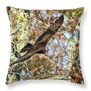Vulture Glide Throw Pillow