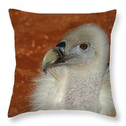 Vulture Portrait Throw Pillow