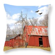 Vultures Over Barn Throw Pillow