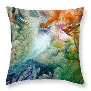 W 023 Throw Pillow