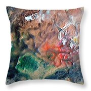 W 042 Throw Pillow