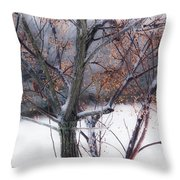 Waching Over Me  Throw Pillow by Kim Loftis