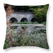 Wachusett Aquaduct Throw Pillow