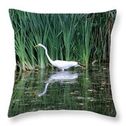 Wading And Waiting Throw Pillow