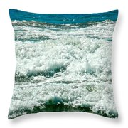 Wading For A Sign Throw Pillow