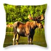 Wading For Breakfast Throw Pillow