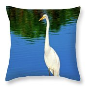 Wading Great White Egret Throw Pillow