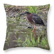 Wading Green Heron Throw Pillow