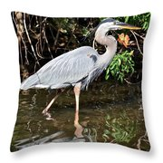 Wading In The Water Throw Pillow
