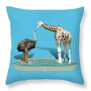 Wading Pool Throw Pillow