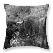 Wagging Tongues Throw Pillow