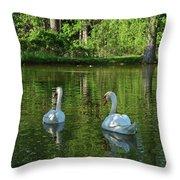 Wagner Vinyard Estate Swans Finger Lakes Lodi Ny Throw Pillow