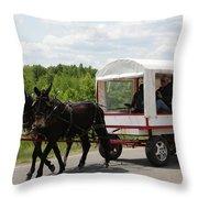 Wagon 6 Throw Pillow