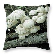 Wagon Wheel Mushroom Colony Throw Pillow