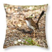 Wagtail 0001 Throw Pillow