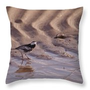 Wagtail On West Sands Throw Pillow