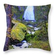 Wahkeena Falls Throw Pillow