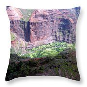 Waiamea Canyon Walls Throw Pillow