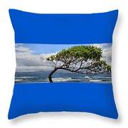 Waiehu Panarama Throw Pillow