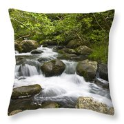 Waihee Valley Stream Throw Pillow
