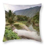Wailoa Stream Throw Pillow