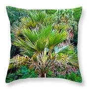Waimea Palm Study 2 Throw Pillow