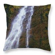 Waimoku Falls Throw Pillow